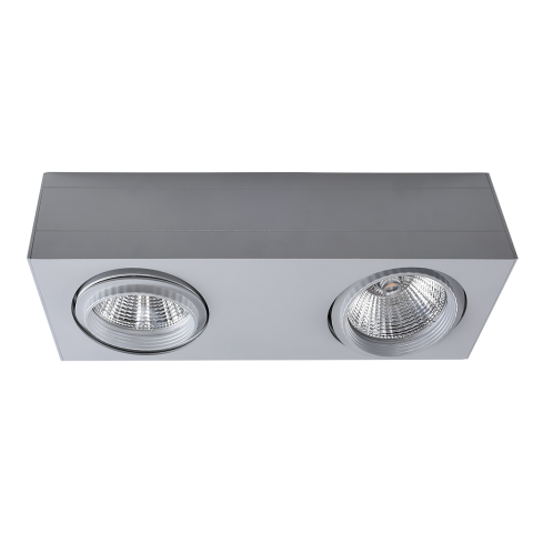 MEJA – Surface Mount 2x LED Spotlight