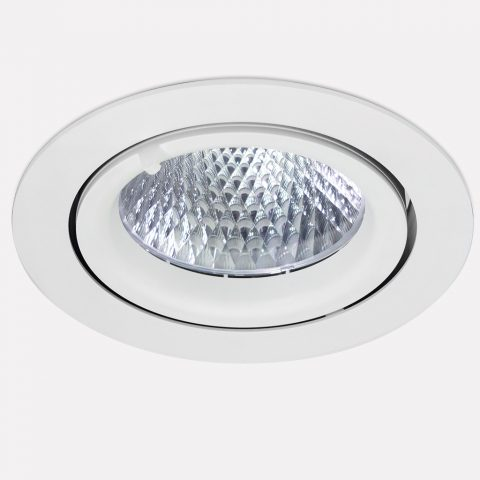 Brotia – Snail LED Spot Light